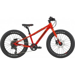 Cannondale Cujo Race 20 Plus