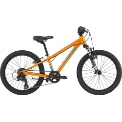 Cannondale Kids Trail 20