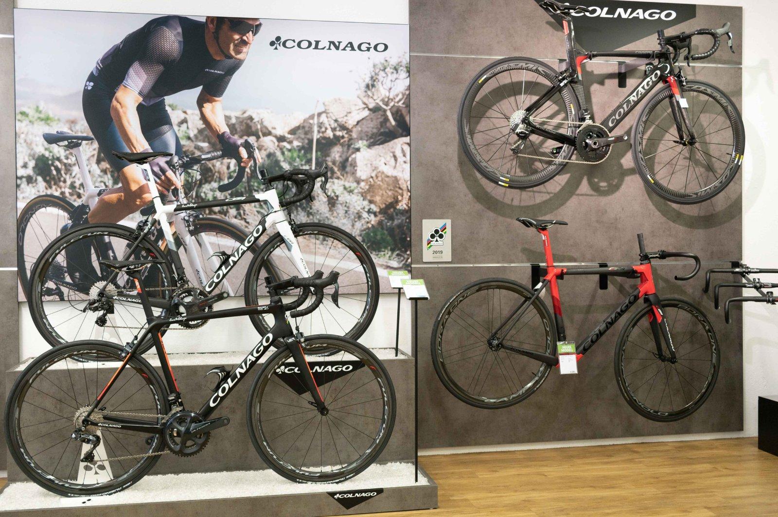 Bauer Sport Colnago Shop